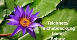Technetz/Teichabdeckung bietet Schutz