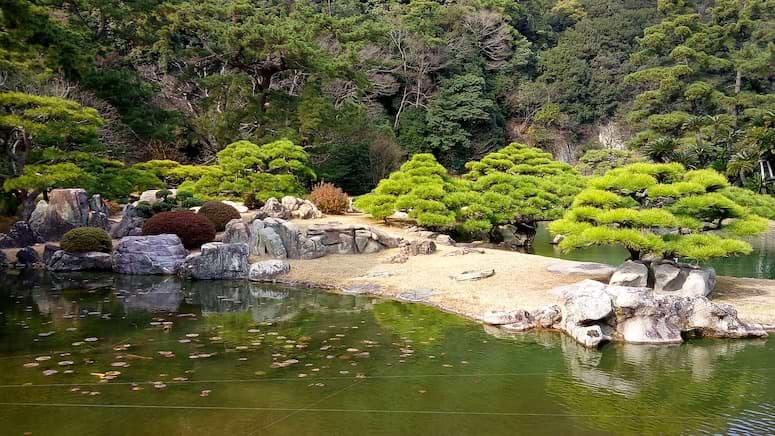 Großer Teich mit Bäumen
